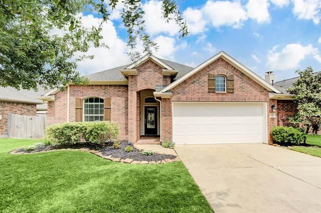 28218 Chalet Park Drive, Katy, TX 77494 (MLS #16501305) :: Homemax Properties