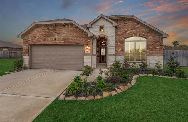 3002 Sandpiper, Texas City, TX 77590 (MLS #16531323) :: Green Residential