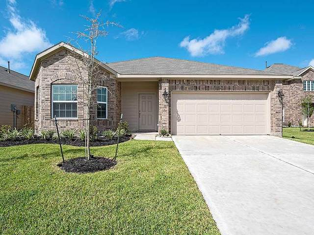 17752 Lion Heart Road, Conroe, TX 77306 (MLS #16571472) :: The Bly Team