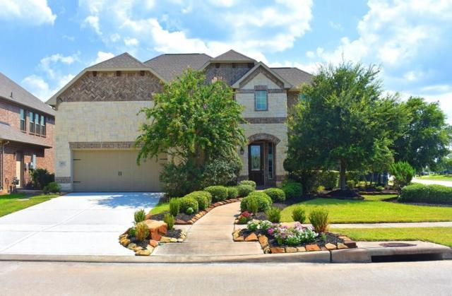 422 Honeysuckle Vine Drive, Rosenberg, TX 77469 (MLS #16661239) :: The Heyl Group at Keller Williams