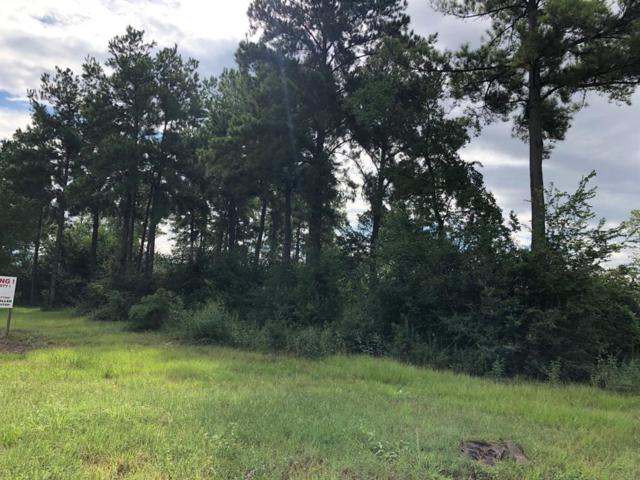 12838 Ann Louise Road, Houston, TX 77086 (MLS #16669418) :: Fairwater Westmont Real Estate