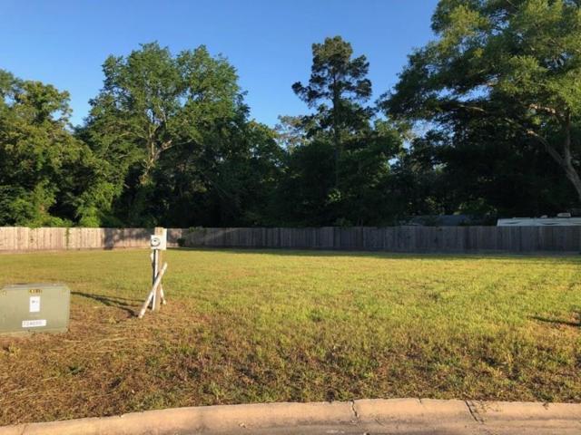 1002 Brad Park, Conroe, TX 77304 (MLS #16712420) :: Texas Home Shop Realty