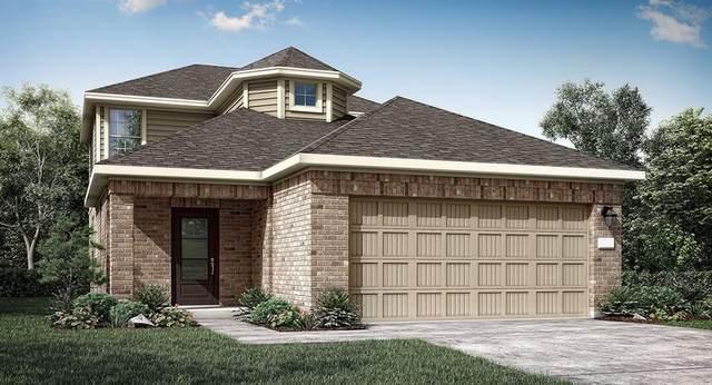18967 Buckley Oak Drive, New Caney, TX 77357 (#16795292) :: ORO Realty