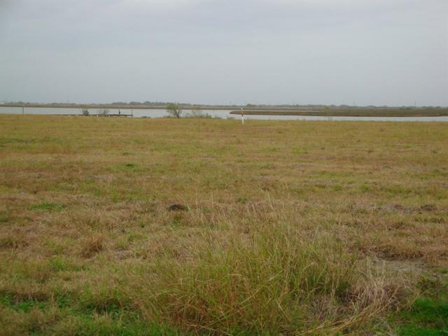 Lot 7 Waypoint Boulevard, Palacios, TX 77465 (MLS #16847268) :: Texas Home Shop Realty