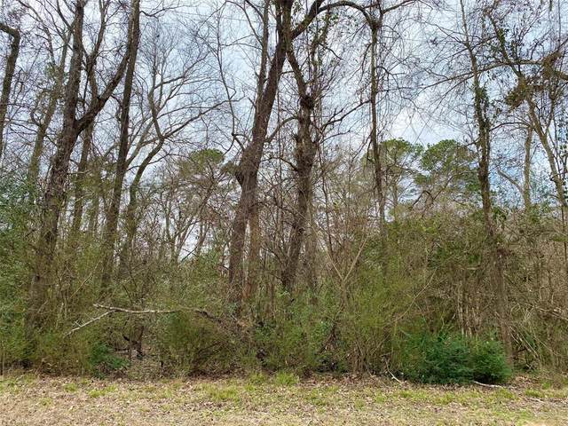 0 Lilac Ln, Lot 30, New Caney, TX 77357 (MLS #16856841) :: Michele Harmon Team