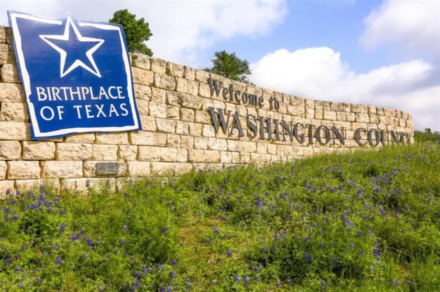 0 Riverside Plantation Lane, Chappell Hill, TX 77426 (MLS #16995322) :: Texas Home Shop Realty