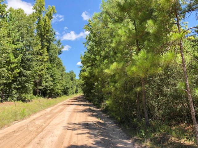 90 Howell Road, Corrigan, TX 75939 (MLS #17000881) :: Giorgi Real Estate Group
