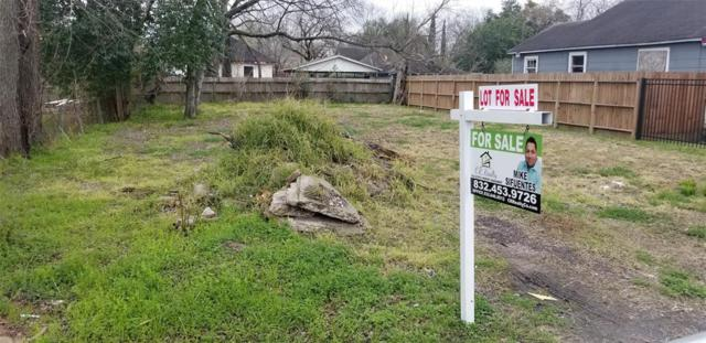 4308 Europa Street, Houston, TX 77022 (MLS #17000945) :: The Collective Realty Group