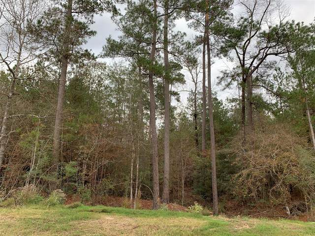 51-24 Lonestar Rd Road, Huntsville, TX 77340 (MLS #17025829) :: The Parodi Team at Realty Associates