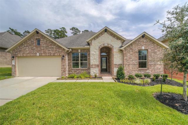12264 Emerald Mist Lane, Conroe, TX 77304 (MLS #17032945) :: Texas Home Shop Realty
