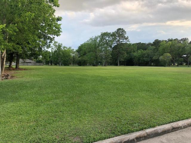 4825 Woodmont Drive, Houston, TX 77045 (MLS #17044465) :: Texas Home Shop Realty