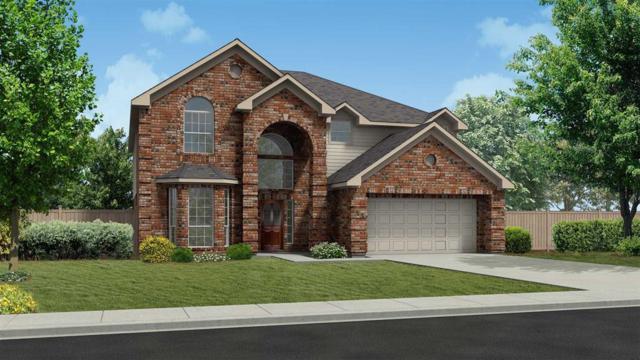 3722 Altino Court, Missouri City, TX 77459 (MLS #17065053) :: Christy Buck Team