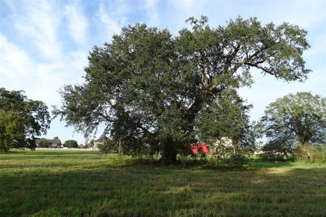 2902 Horse Trail Drive, Rosharon, TX 77583 (MLS #17112409) :: Giorgi Real Estate Group