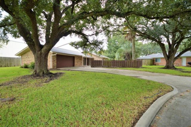 1307 Basilan Lane, Nassau Bay, TX 77058 (MLS #17167370) :: Texas Home Shop Realty