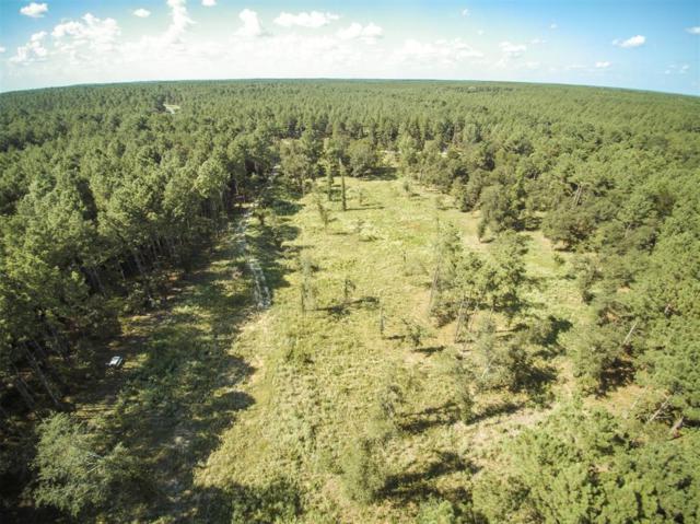 4876 Deep Forest Trail, Navasota, TX 77868 (MLS #17197302) :: Keller Williams Realty