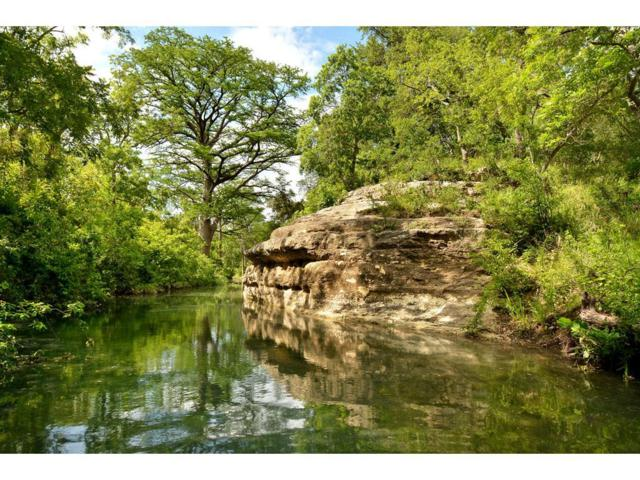 12300 Fm 150, Driftwood, TX 78619 (MLS #17209106) :: REMAX Space Center - The Bly Team