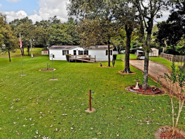 28213 Walnut Hill Drive, Hockley, TX 77447 (MLS #17227140) :: Magnolia Realty