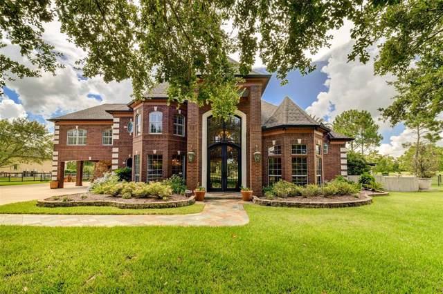 3508 Buckholt Street, Pearland, TX 77581 (MLS #17228324) :: Ellison Real Estate Team