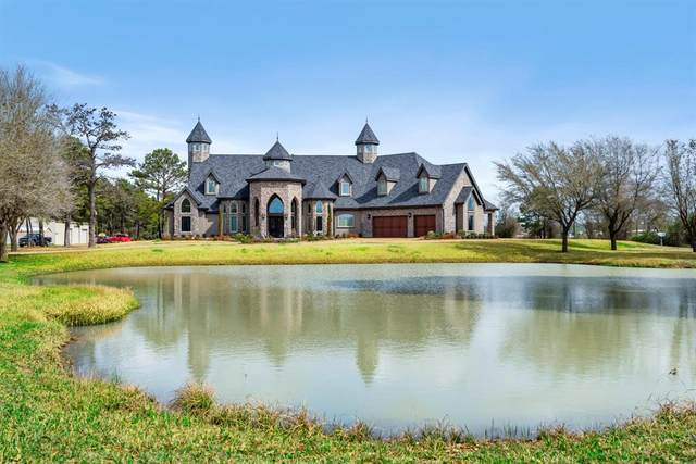20202 Bauer Hockley Road, Tomball, TX 77377 (MLS #17277233) :: Michele Harmon Team