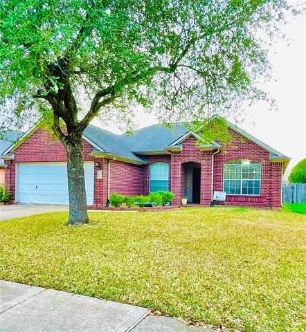 17234 Pecan Acres Drive, Sugar Land, TX 77498 (MLS #17310184) :: Caskey Realty