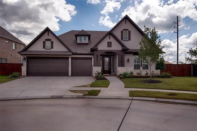 10115 Da Vinci Court, Iowa Colony, TX 77583 (MLS #17321666) :: JL Realty Team at Coldwell Banker, United