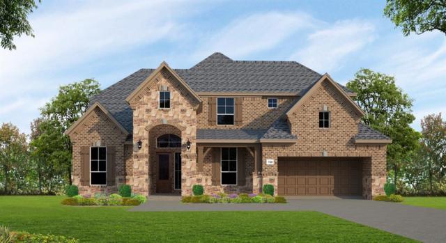 6539 Woodleaf Lake Loop, Katy, TX 77493 (MLS #17352963) :: Texas Home Shop Realty