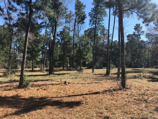 1950 Cr 3155, Crockett, TX 75855 (MLS #17396391) :: Green Residential