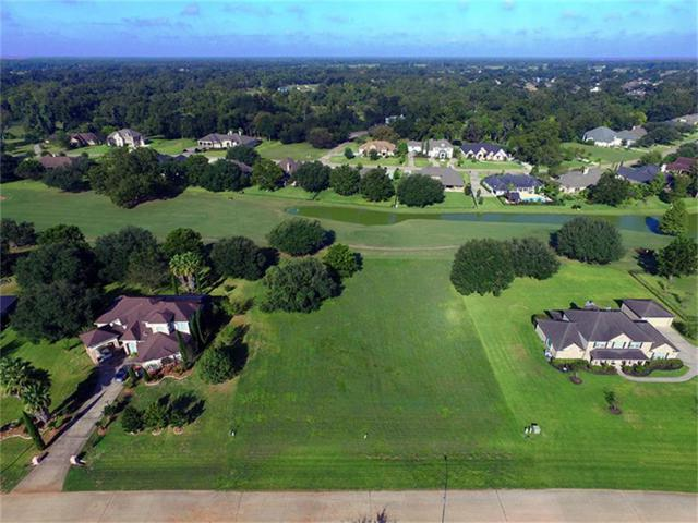 3923 Wentworth Drive, Fulshear, TX 77441 (MLS #17436669) :: The SOLD by George Team