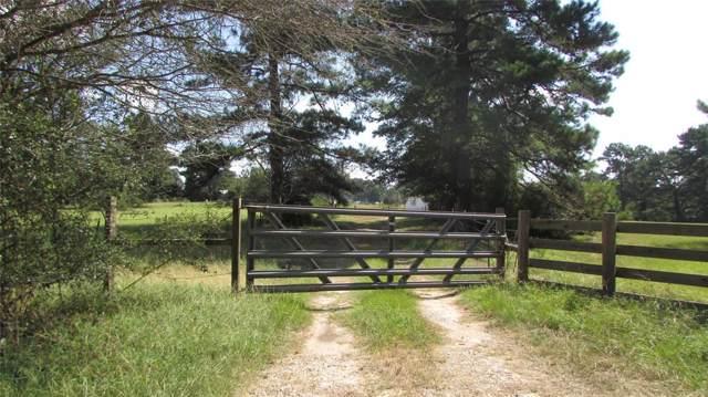 14662 Cedar Lane Loop, Willis, TX 77378 (MLS #17496022) :: The Home Branch