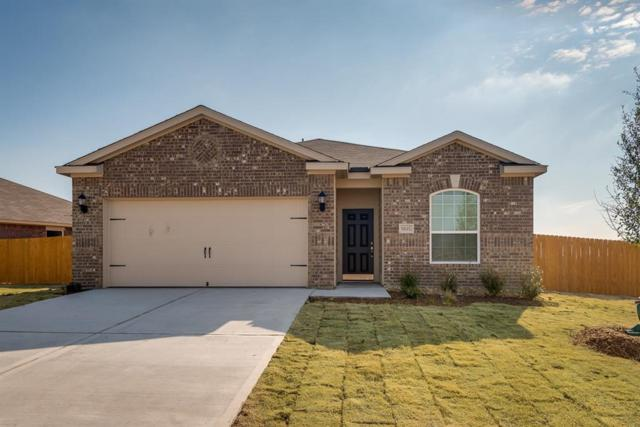 1319 Emerald Stone Drive, Iowa Colony, TX 77583 (MLS #17597279) :: Connect Realty