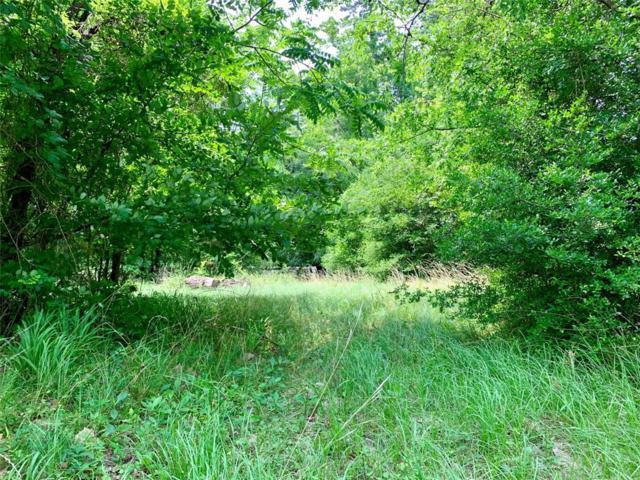 144 Lake Pines Circle, Livingston, TX 77351 (MLS #17626117) :: Fine Living Group