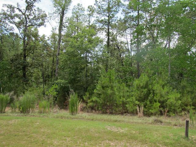 29013 Shirley Meadows, Magnolia, TX 77355 (MLS #17642614) :: Giorgi Real Estate Group