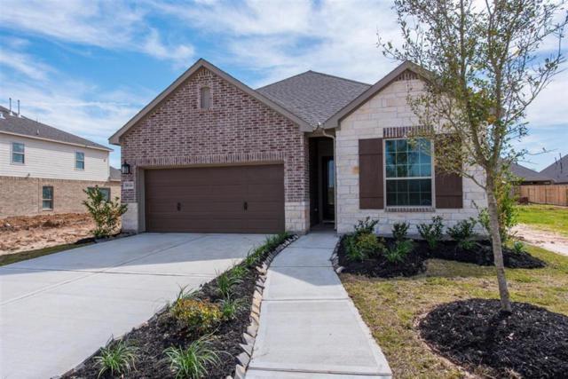 8123 Jamesy, Missouri City, TX 77459 (MLS #17742438) :: Phyllis Foster Real Estate