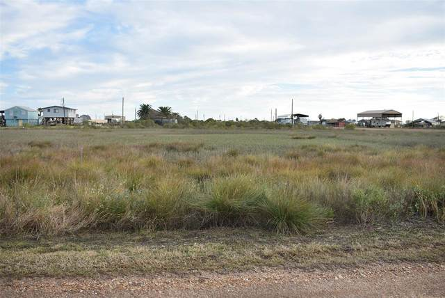Lot 381 Mariposa, Sargent, TX 77414 (MLS #17760319) :: Michele Harmon Team