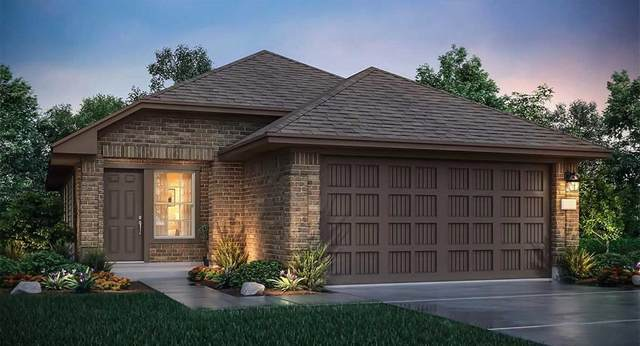 3623 Solanum Drive, Conroe, TX 77301 (MLS #17794446) :: The SOLD by George Team