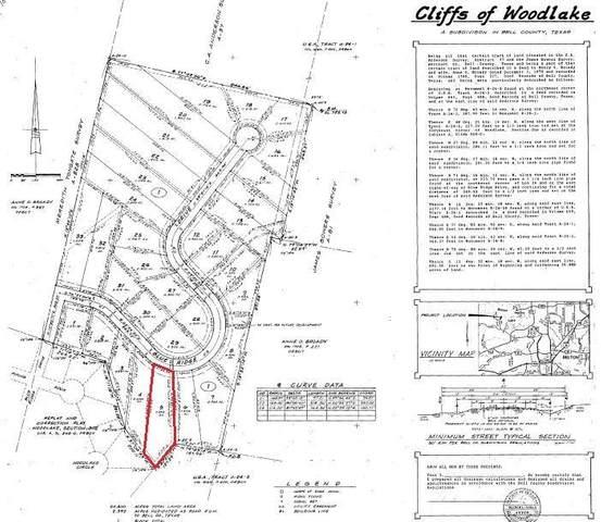 4447 Blue Ridge Drive, Belton, TX 76513 (MLS #17853283) :: The Home Branch