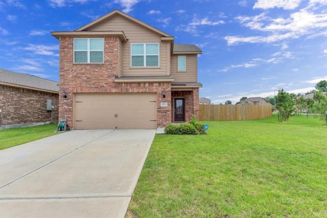 22723 Bauer Sky Drive, Hockley, TX 77447 (MLS #17912008) :: Magnolia Realty