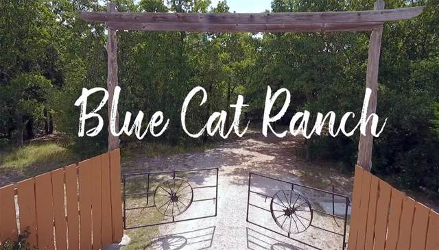 1701 Raymond Lehmann, Ledbetter, TX 78946 (MLS #17971249) :: Green Residential
