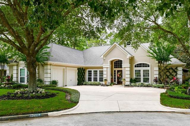 12403 Pelican Isle Court, Tomball, TX 77377 (MLS #18071905) :: The SOLD by George Team
