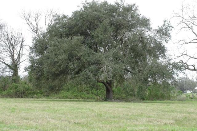 426 Lily Lane, Rosharon, TX 77583 (MLS #18121720) :: Caskey Realty