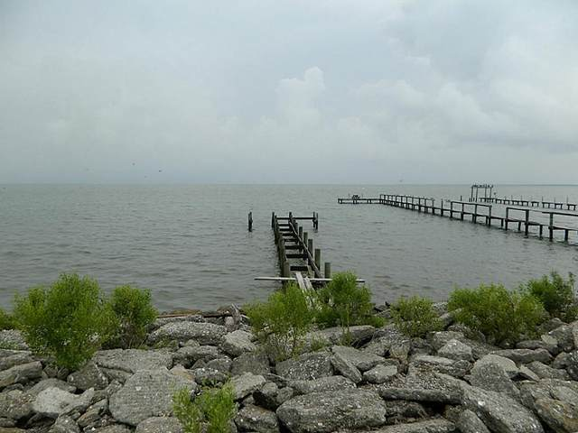 2006 Todville Road, Seabrook, TX 77586 (MLS #18135493) :: The Bly Team
