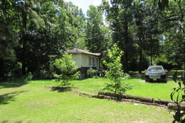 12979 Fm 1485, Conroe, TX 77306 (MLS #18157021) :: Ellison Real Estate Team
