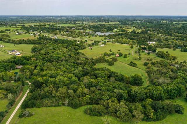 Lot 24 Meadow Court, Montgomery, TX 77356 (#18169501) :: ORO Realty