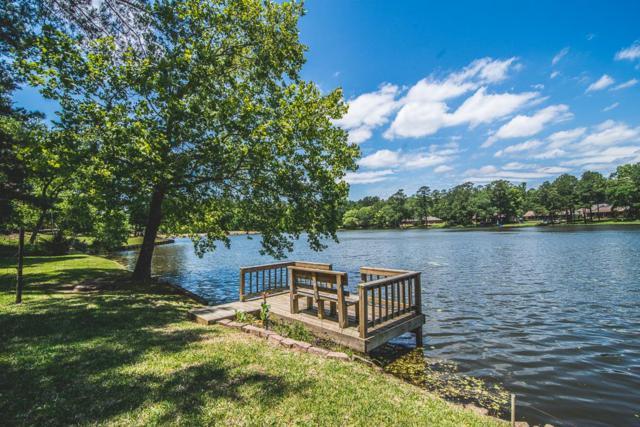1919 East Lake Drive, Huntsville, TX 77340 (MLS #18182784) :: Mari Realty