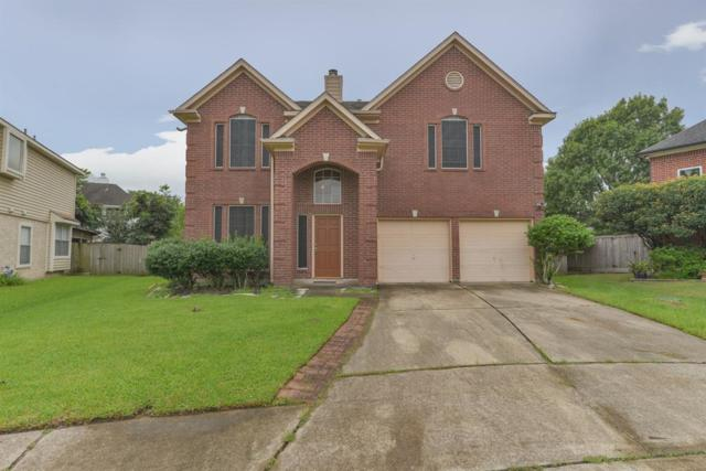 8606 Shady Tree Court, La Porte, TX 77571 (MLS #18271521) :: The SOLD by George Team