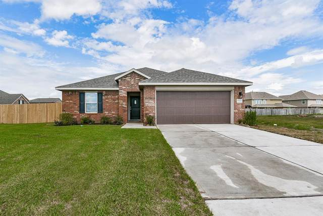 8703 Mugwort Drive, Rosenberg, TX 77469 (MLS #18274562) :: The Bly Team