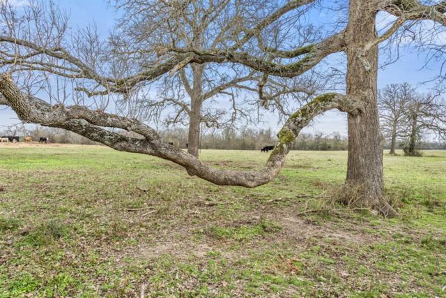 0000 County Road 238, Bedias, TX 77831 (MLS #18350067) :: Fairwater Westmont Real Estate