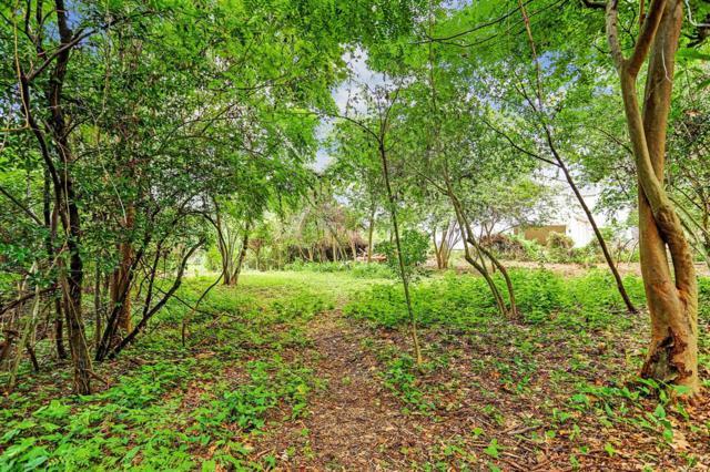 242 Pine Hollow Lane, Houston, TX 77056 (MLS #18350181) :: Magnolia Realty