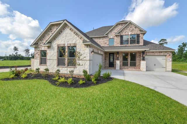 20807 Passelande Drive, Tomball, TX 77375 (MLS #18375004) :: Giorgi Real Estate Group
