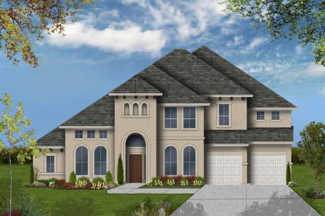 2506 Serene Path, Missouri City, TX 77459 (MLS #18401066) :: The Home Branch